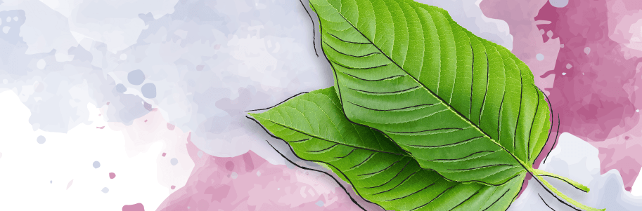 The Ultimate Guide to Kratom Withdrawal, Symptoms, and Detox Programs