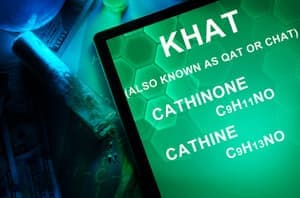 Khat also known as qat or chat